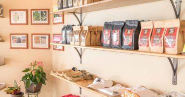 ベイ・ビュー・ファーム » コーヒー豆のチョコが美味しい / ハワイ島 ホナウナウ