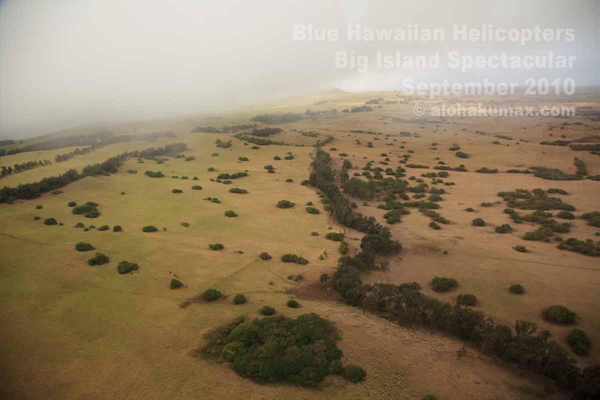 砂漠気候と熱帯雨林気候の境界