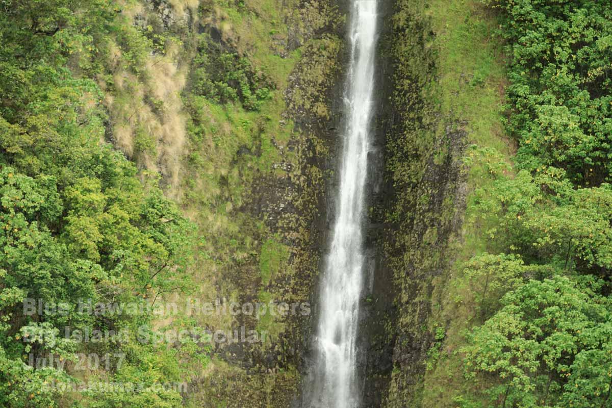 ワイマヌ渓谷のワイイリカヒ滝 その2