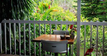 コーヒー・シャック » 絶景とゲッコで有名なカフェ / ハワイ島 キャプテン・クック