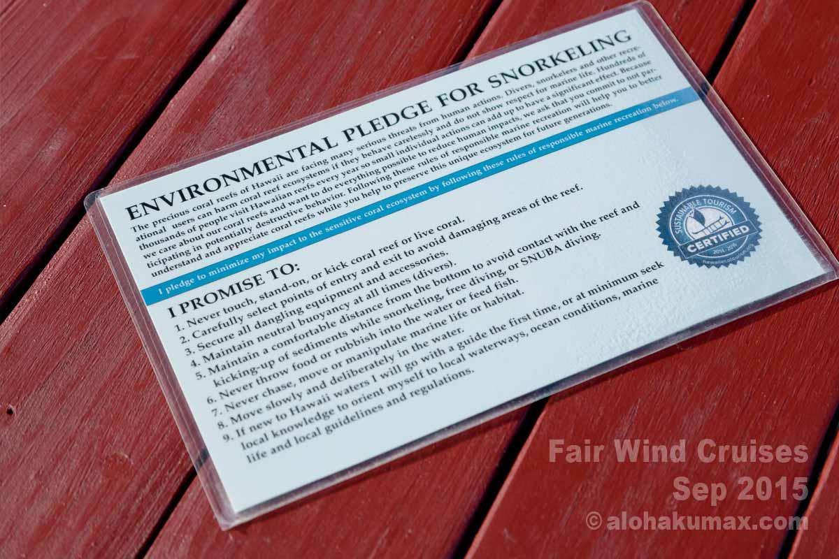 スノーケリングのための環境誓約