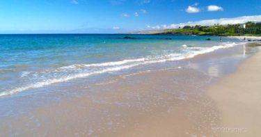 ハプナ・ビーチ州立公園 » 全米No.1!ハワイ島を代表するビーチ / コハラ・コースト(サウス・コハラ)