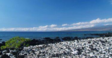ホロホロカイ・ビーチ・パーク » ごま塩風ビーチ!? / ハワイ島 マウナ・ラニ・リゾート
