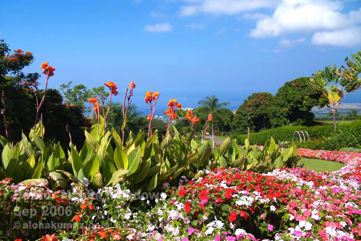 美しい園内