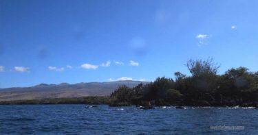 プアコ » コハラコーストの穴場的な町 / ハワイ島