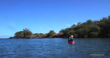 プアコ湾発! 水上散歩ツアー(2011年9月) » カヤックとシュノーケルで二度美味しい! / ハワイ島