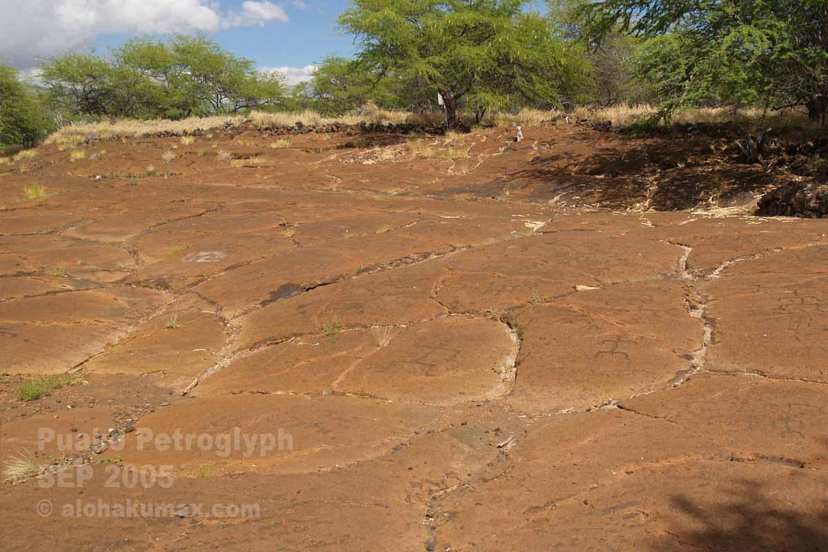 たくさんのペトログリフが刻まれた岩盤