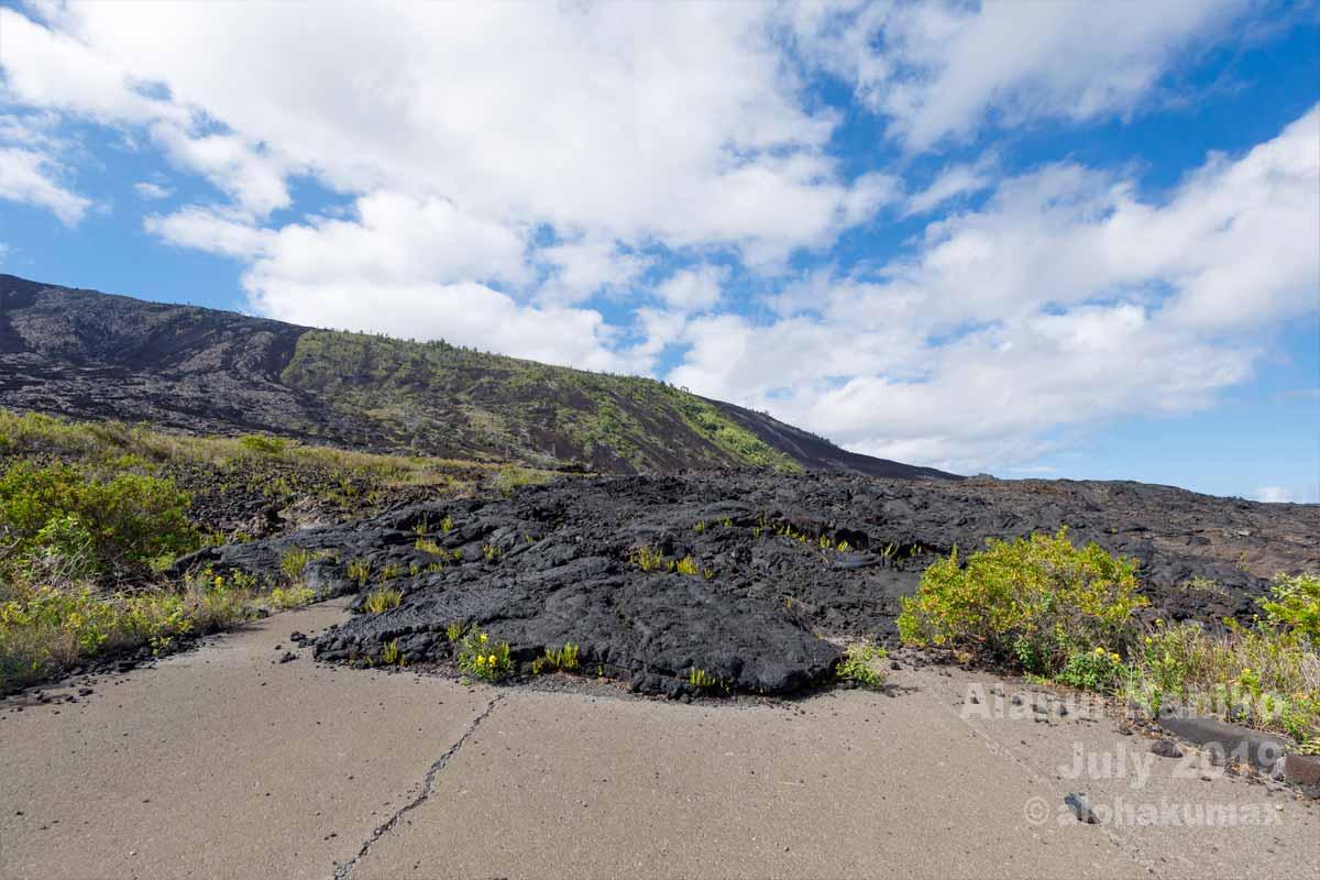 旧チェーン・オブ・クレーターズ・ロードに流れ着いて固まった溶岩