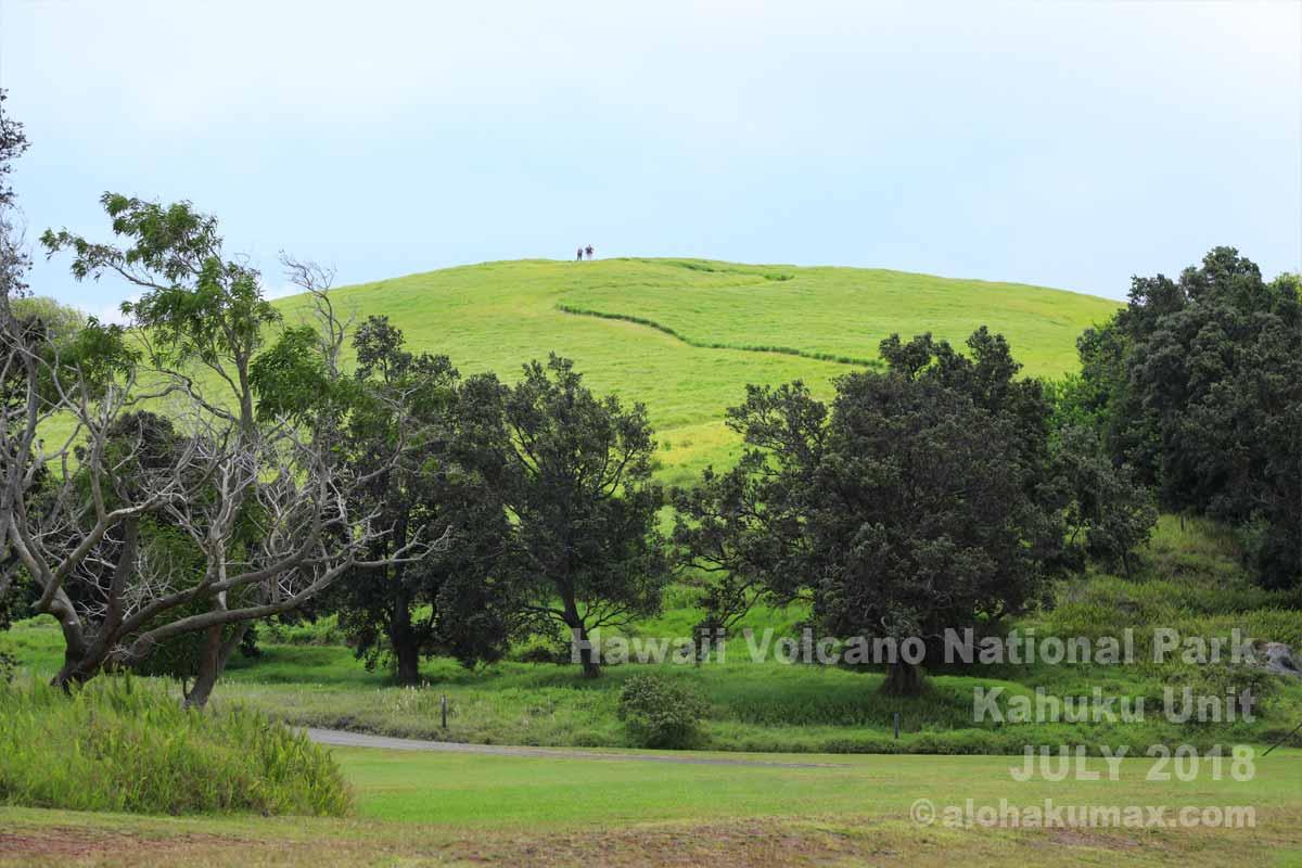 ハワイ火山国立公園(カフクユニット)