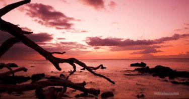 ハワイ島の観光スポットランキングを勝手に作ってみた! – 自然編