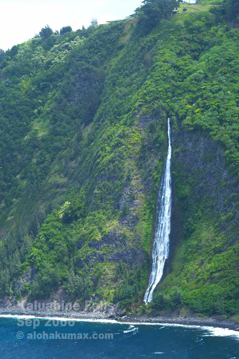 展望台の下辺りから流れ出る滝