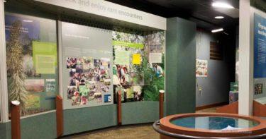 キラウエア・ビジター・センター »  キラウエア火山観光の拠点 / ハワイ島