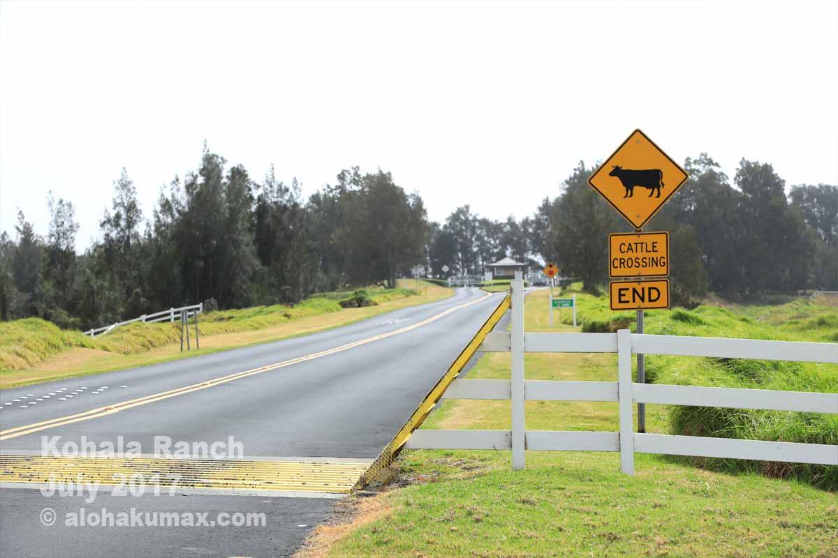 「牛横断注意」の標識