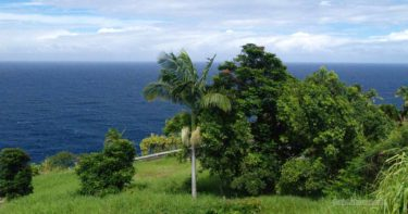 ラウパホエホエ展望台 » 悲しい歴史が残るシーニックポイント / ハワイ島 ハマクア・コースト