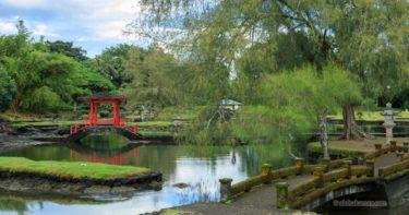 リリウオカラニ公園 » 日本庭園とバニヤンツリーに癒される / ヒロ ハワイ島