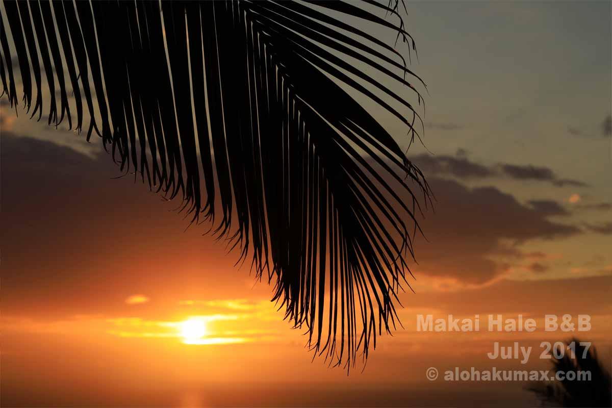 海に沈む夕陽も美しい