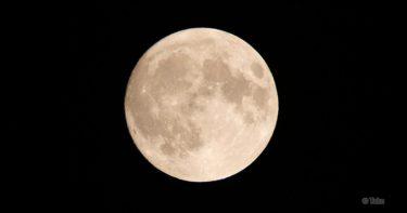 ハワイ島で綺麗な星空を見るために必要な知識(天体観測に適した時期)