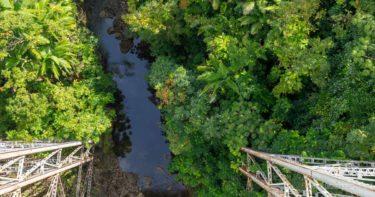 ナヌエ橋 » 見なきゃ損!知る人ぞ知る名スポット / ハワイ島 ハマクア・コースト