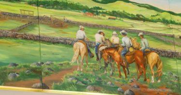 パーカー・ランチ » かつて全米一の広さを誇った牧場 / ワイメア ハワイ島