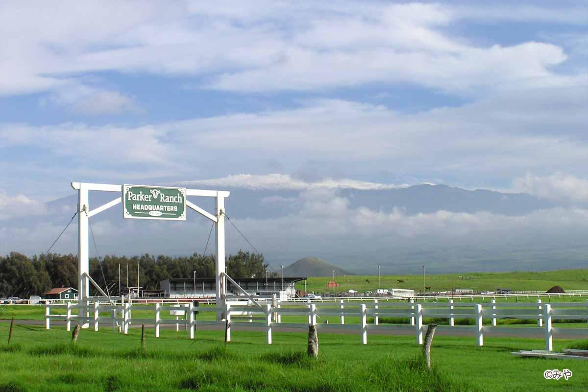 パーカーランチ(2005年2月)