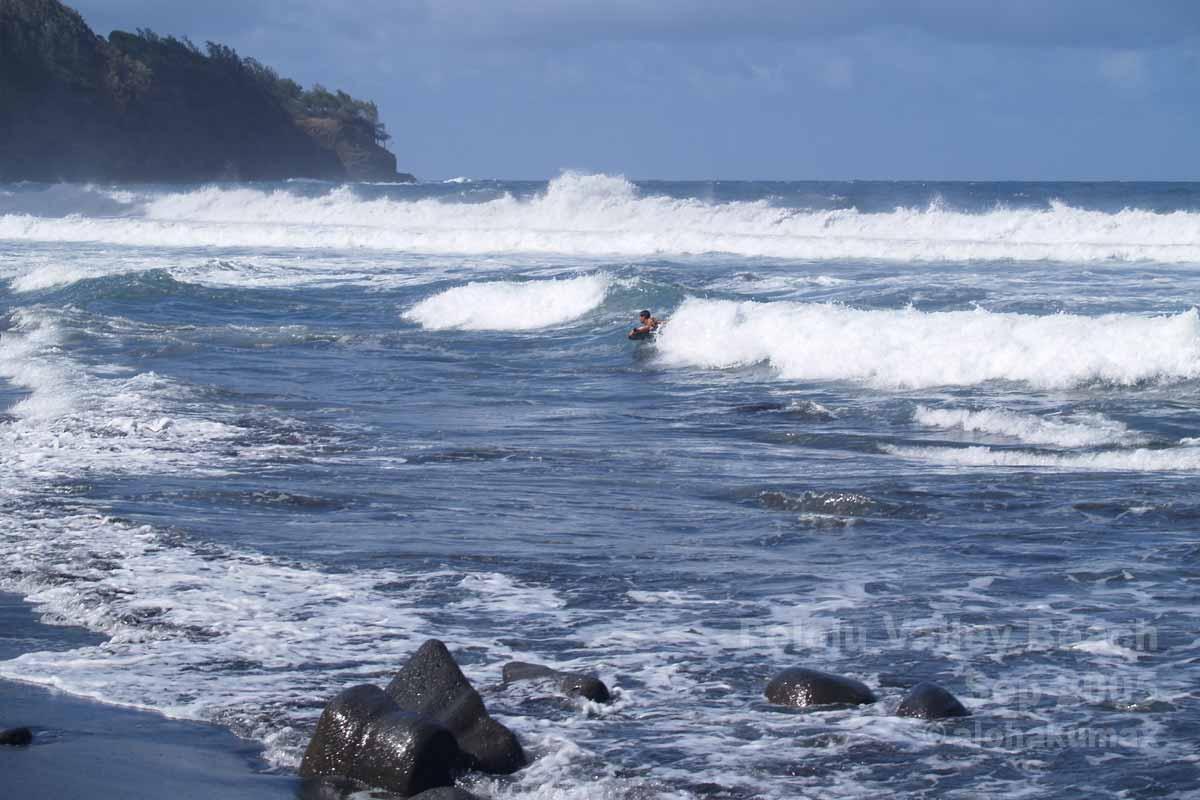 波に乗るボディーボーダー
