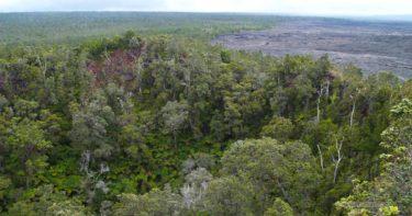 プウ・フルフル・トレイル » プウオオ火口が見られる場所 / キラウエア火山(チェーン・オブ・クレーターズ・ロード) ハワイ島