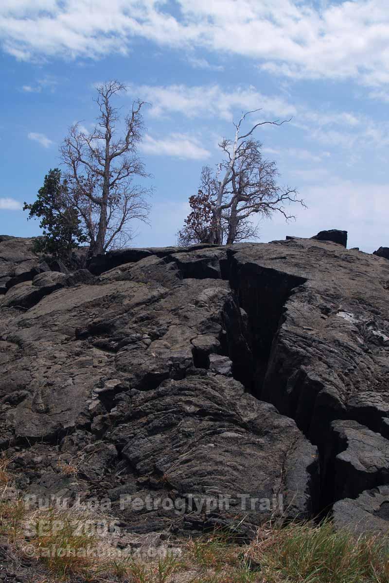 溶岩にできた亀裂