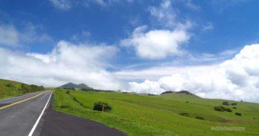コハラ・マウンテン・ロード(250号線) » 緑の牧場をドライブしよう / ハワイ島