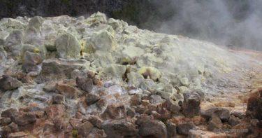 サルファー・バンクス » キラウエア火山の穴場的スポット 硫黄の結晶を見よう / ハワイ島