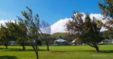 ワイメア(カムエラ) » 広大な牧草地が広がる美しい町 / ハワイ島