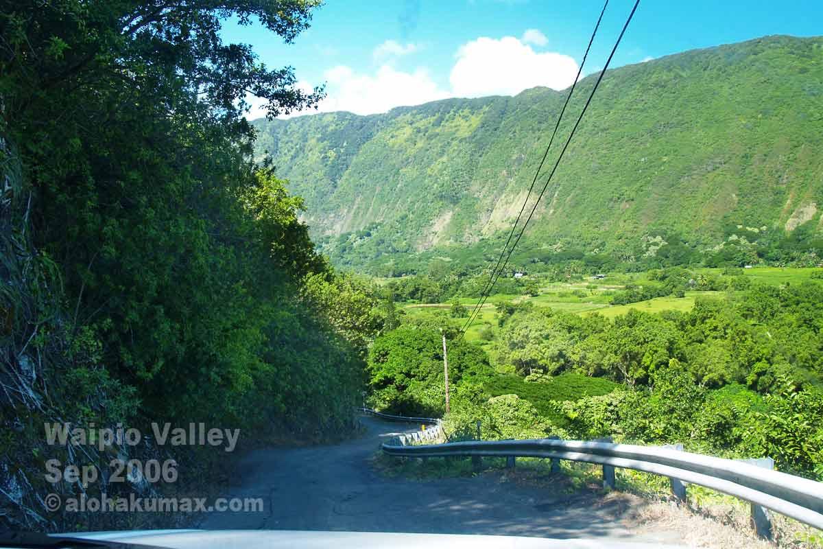 ワイピオ渓谷の谷底へと続く坂道