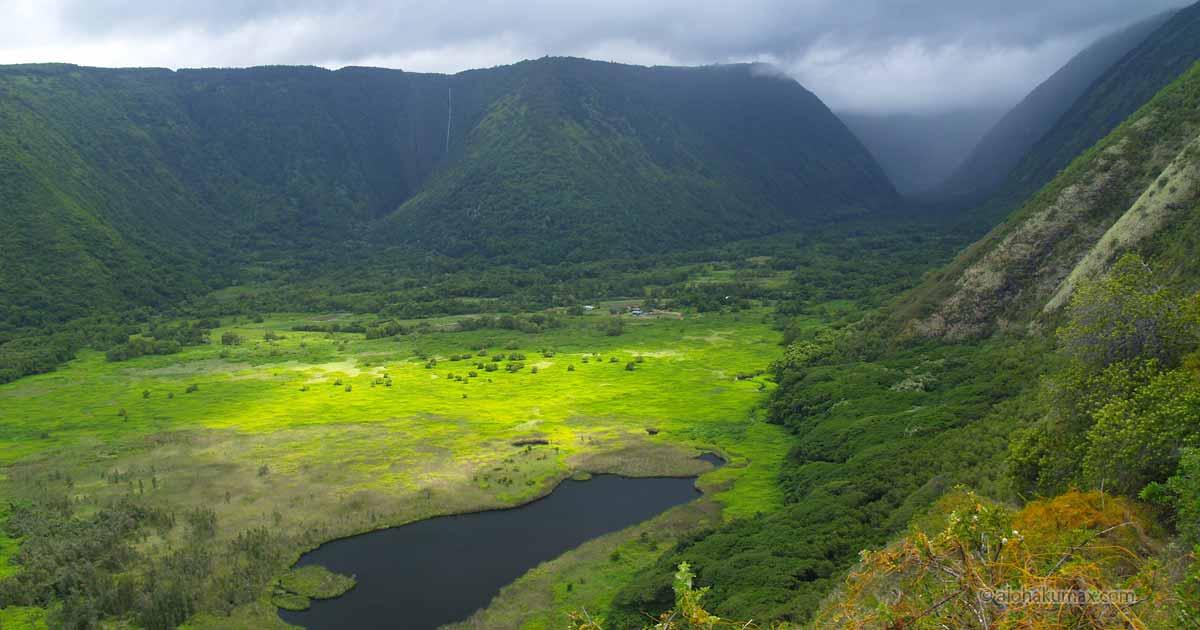 ワイピオ渓谷の谷底