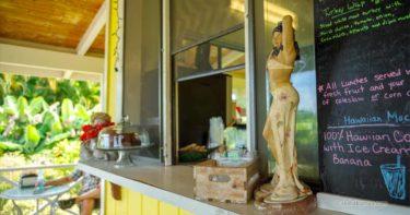 ワッツ・シェーキン » スムージーが絶品!広いお庭で休憩を / ハワイ島 ハマクア・コースト