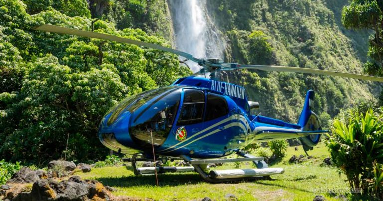 ブルーハワイアンヘリコプターズ