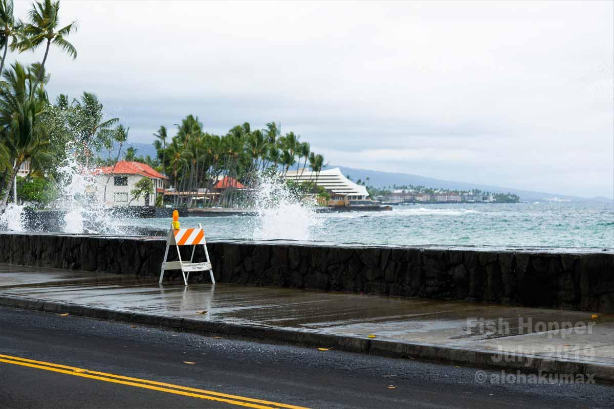 店の前の防波堤